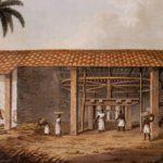 Engenho de São Romão no Rio da Casca, em 1781 (Texto Prof.ª Ms. Maria Amélia Assis Alves Crivelente)